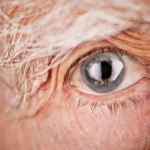 iStock_000016098935XSmall old man eye close up