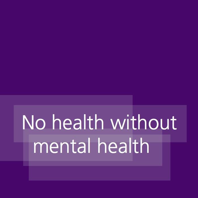 Essay on mental illness
