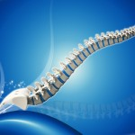 spine with blue background