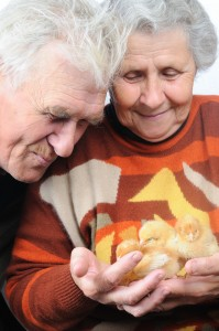 Old people with chick