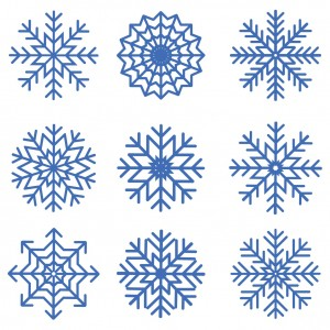We're not quite talking snowflakes here, but there was huge variation in the