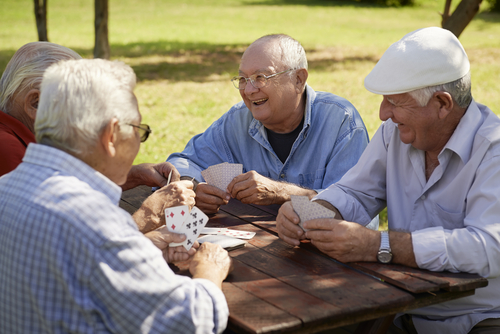 The researchers developed a conceptual model of the transition to retirement programme