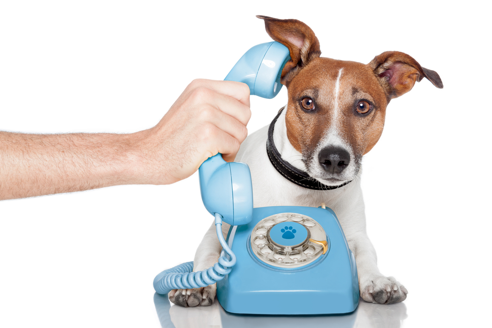 Telephone interviews may not be the best approach