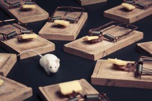 Are we researching and prescribing the right sort of mousetraps?
