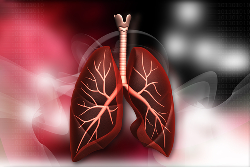 Respiratory infection is the leading cause of death in adults with Down syndrome