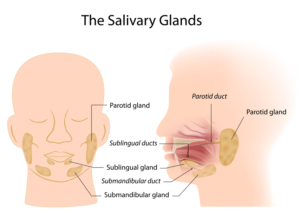 Sialendoscopy For Obstructive Salivary Disease