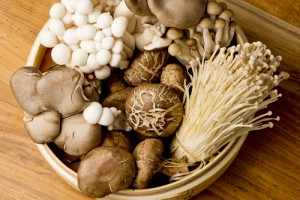 Evidence-based practice helps you know which type of mushroom to add to the cooking pot; or which social work intervention might work well with your client