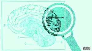 Could neuroimaging become part of the routine diagnostic process in the future?