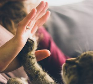 There's surprisingly little evidence of the role that pets play in the lives of people living with mental distress.