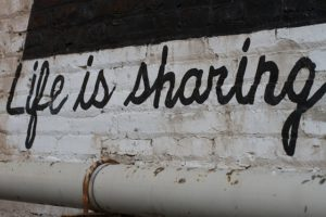 Shared Lives schemes appear to