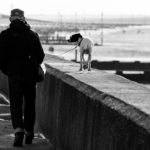 walk-1385880_1280