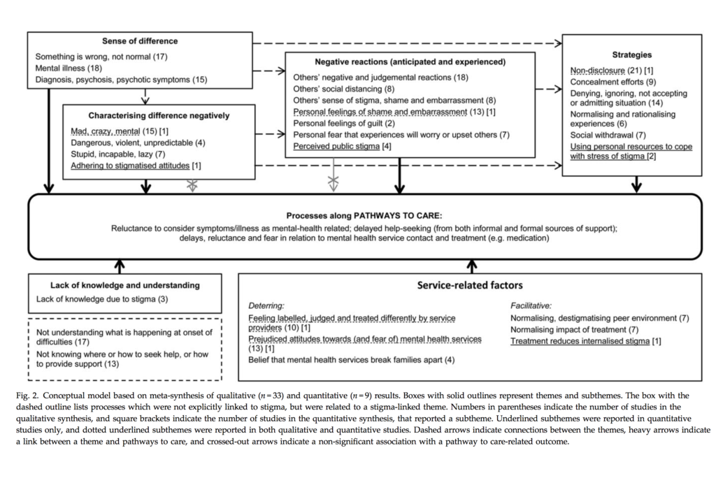 The review found that stigma-related processes can influence help-seeking and service contact among first-episode psychosis and at-risk groups. Click the above figure to view full size