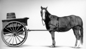 Are we putting the mindfulness cart before the evidence horse?
