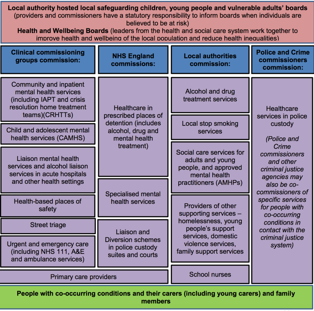 Post-2013 commissioning and delivery landscape for dual diagnosis.