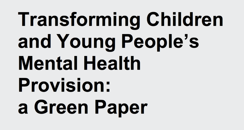 The new green paper recommends putting 'a mental health lead in every school and college'. Is this a good idea?