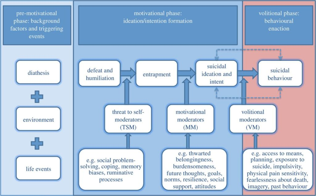 The IMV (Integrated Motivational Volitional) model of suicidal behaviour.