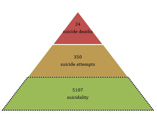 Overall, the rate ratio of suicide deaths to suicide attempts and suicidality was 1:15:212. The factors that affect and lead from suicidality to death by suicide are, however, not clear.