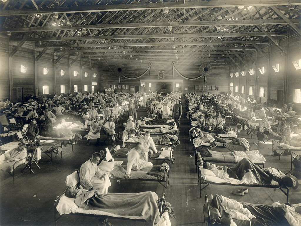 Can the Spanish influenza pandemic of 1918-9 teach us something about the possible links between COVID-19 and severe mental illness?