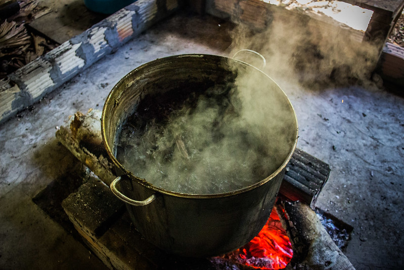 The shamanic brew operates via complex pathways including those involving neuroplasticity, which may be a central feature of its therapeutic potential to tackle the depression epidemic.