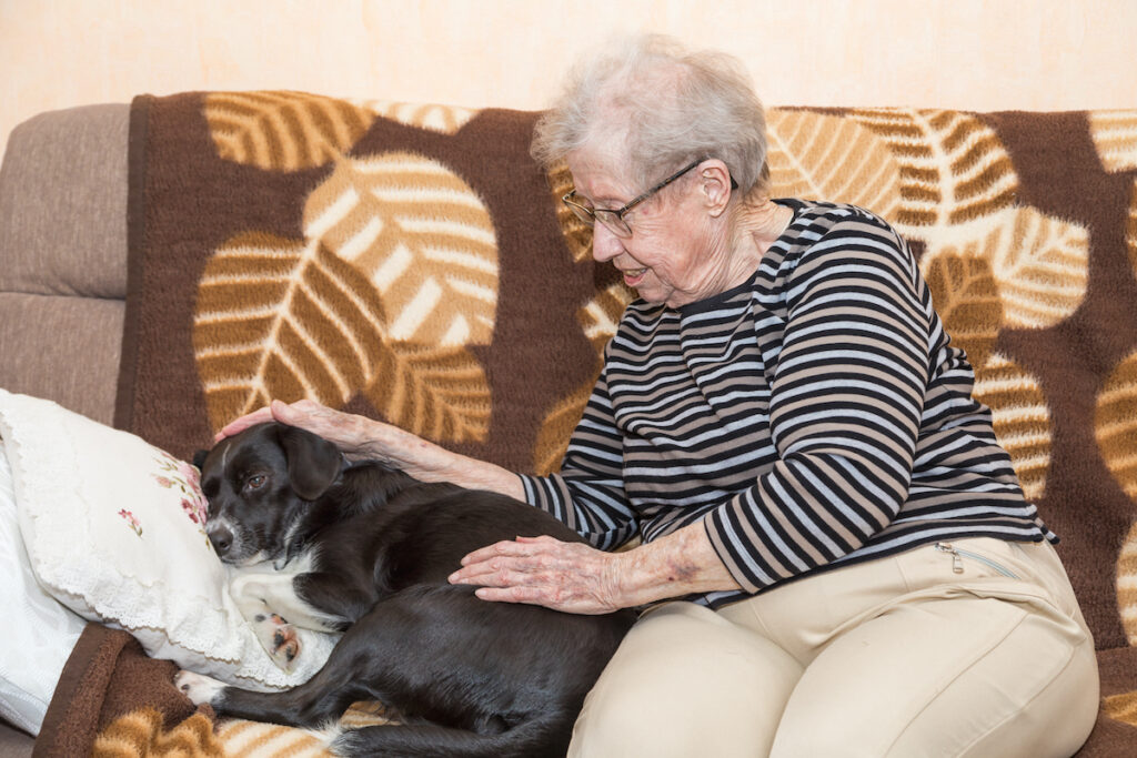 Animals have been found to be helpful for people living ADHD or poor mental health, could dogs be beneficial for people living with dementia?
