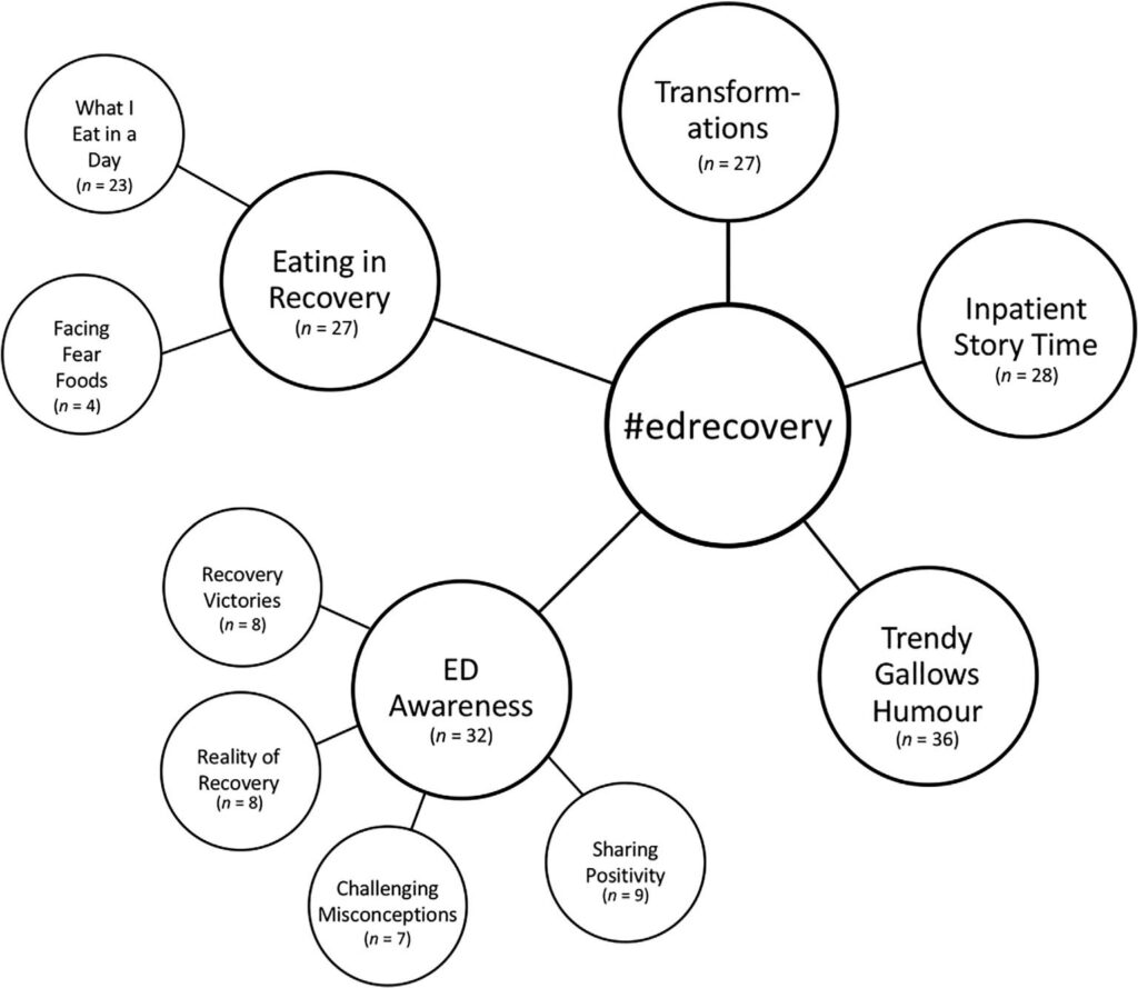 Figure 1. Themes identified across content posted under #EDrecovery on TikTok.