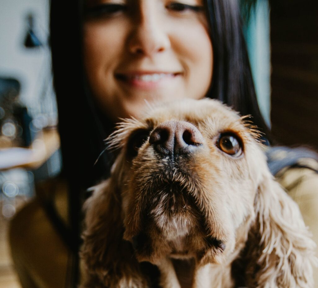 The inclusion of therapy dogs in the research process seemed to create an environment which resulted in more meaningful and enriched data being collected.